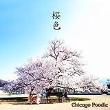 桜色(初回限定盤)(DVD付)