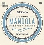 D'Addario ダダリオ マンドラ弦 フォスファーブロンズ Light .014-.049 EJ72 【国内正規品】