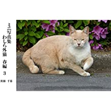 Photos We are Street Cats in Spring 3 (Japanese Edition)