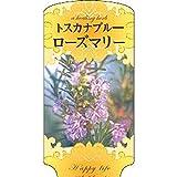 【1000枚】 AC 2型 トスカナブルーローズマリー ROZUMAR-003 ポリポット用 ラベル 名札 育苗 アンドウケミカル カ施 代不