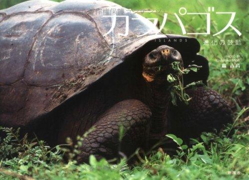 ガラパゴス―進化の鼓動