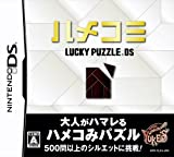 「ハメコミ LUCKY PUZZLE DS」の画像