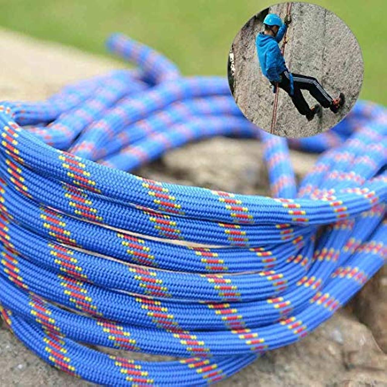 衣服赤外線望まないLYL 長さ:10m直径:10mm、クライミング補助ロープ非アクティブロープ安全救助ロープ (色 : 青)