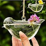 ガラスの植木鉢水耕花瓶の庭の装飾を吊るす鳥の形