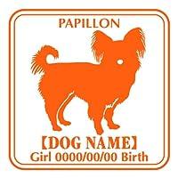 ワラ犬 パピヨン (パピオン)横向き ステッカー Eパターン ガール ゴールド