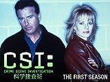 CSI:科学捜査班 シーズン 1 (字幕版)