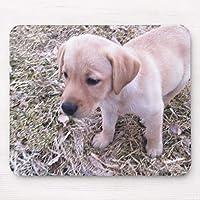 黄色いラブラドル・レトリーバー犬 マウスパッド敷き おしゃれ かわいい 滑り止め 動物 可愛い マット パット オシャレ(20x25cm)