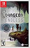 Dungeon of The Endless (輸入版:北米) – Switch