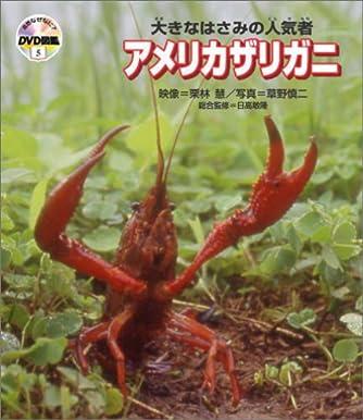 自然なぜなに?DVD図鑑5 大きなはさみの人気者 アメリカザリガニ