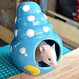 Cathyのハウス 小動物のハウス 隠れ家 陶器 装飾 超可愛い ハムスター・ネズミ・チンチラ おへや 遊びところ (巻き貝さん, L)