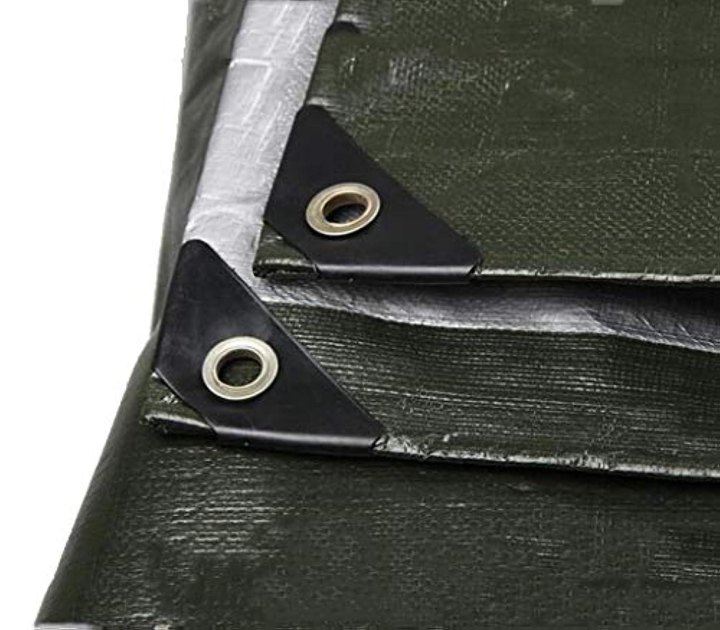 積極的に不可能なアフリカカーポートの絶縁材の防水シート布屋外の日よけの防水防雨プラスチック防水シート-180g / mの² (サイズ さいず : 4 x 8m)
