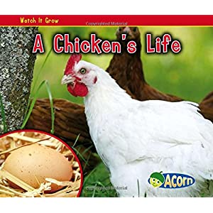 A Chicken's Life (Acorn: Watch It Grow)