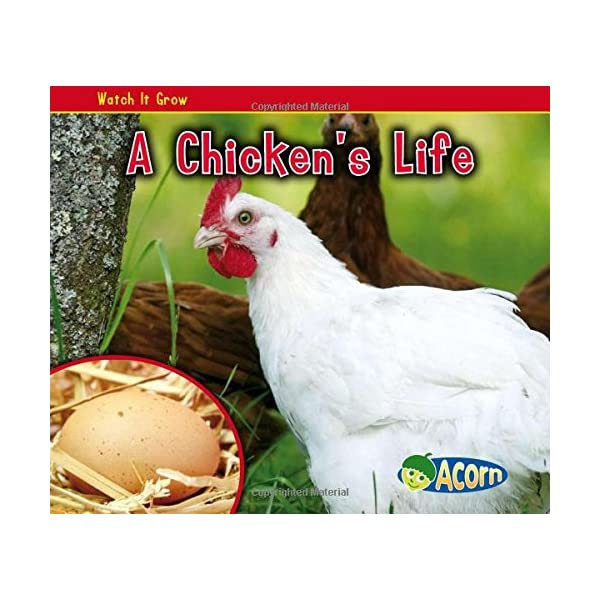 A Chickens Life (Acorn: ...の商品画像