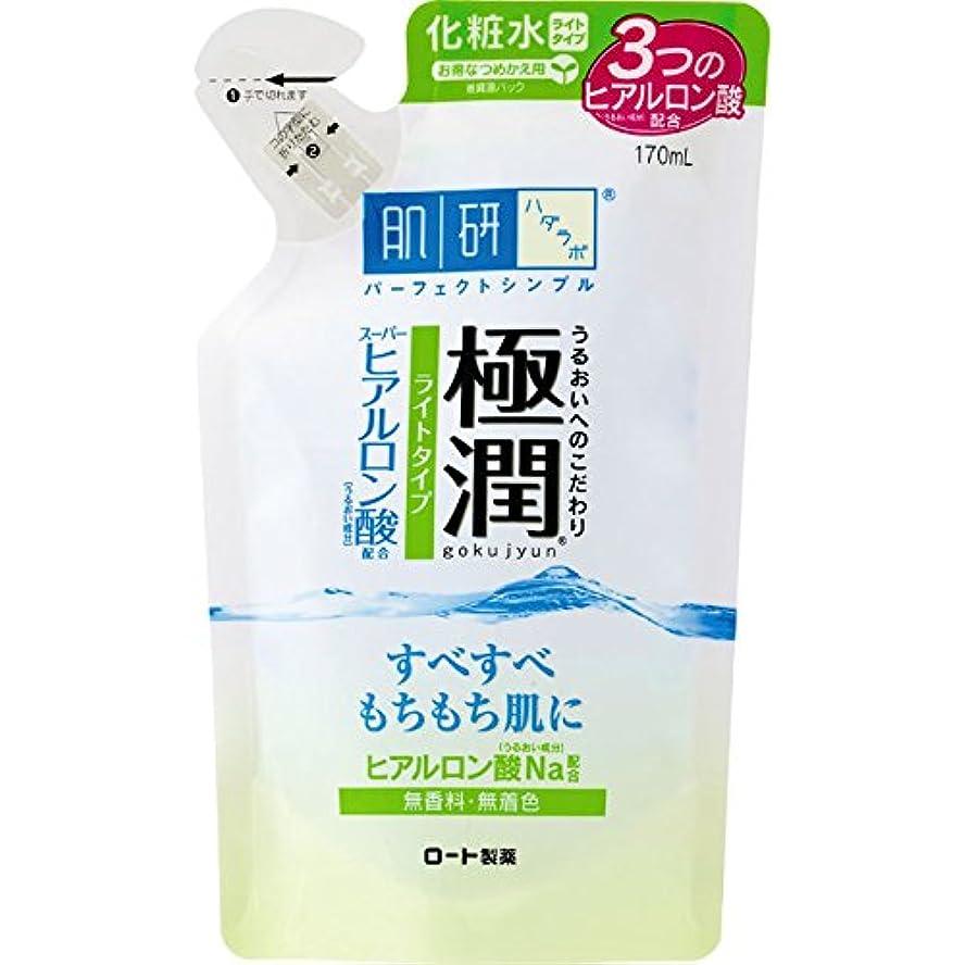 病的服を洗うオーチャード肌研 極潤 ヒアルロン液 ライトタイプ つめかえ用 170mL