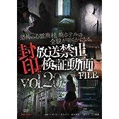封印!!放送禁止検証動画FILE Vol.20 恐怖の心霊廃村、廃ホテルの全貌が明らかになる。 [DVD]