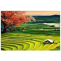 メープル水田芝生壁画-カスタム写真3d壁紙テレビソファ背景壁画3d壁壁画壁紙の壁300センチ(W)×200センチ(H)
