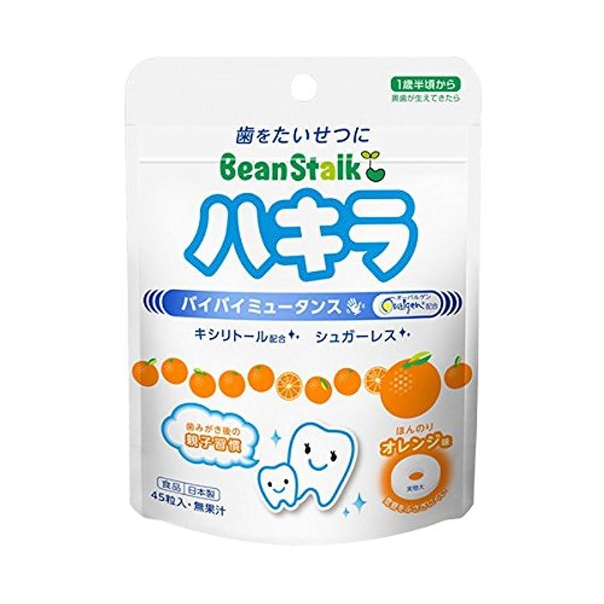 プレフィックスバーマド句読点ハキラ オレンジ味 45粒入