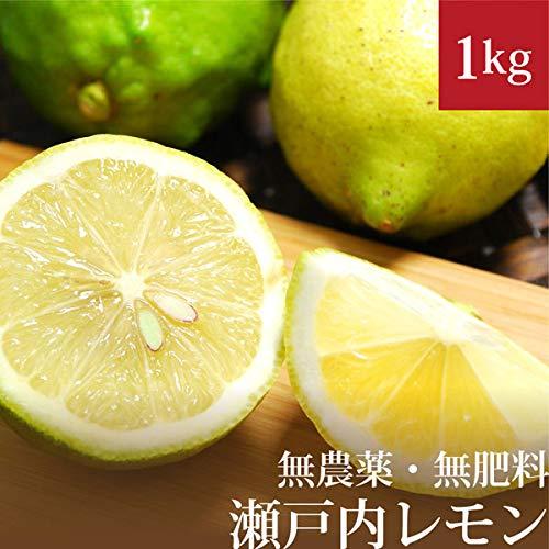 瀬戸内レモン 1kg 自然栽培(無農薬・無肥料) 広島県産 国産