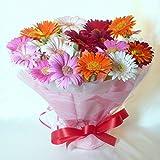 1065【お祝い 母の日 誕生日】ガーベラスタンド型花束・ブーケ型アレンジメント・カラフルミックス20本