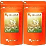 お徳用ビタミンB群+葉酸 (540粒/約6ヶ月分)【123000200073002】