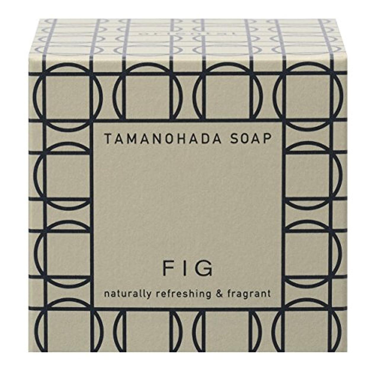 贅沢な細分化する多様体タマノハダ ソープ 005 フィグ 125g