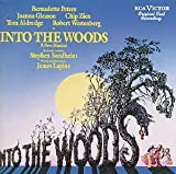 Into The Woods: A New Musical - Original Cast Recording (1987 Broadway Cast)