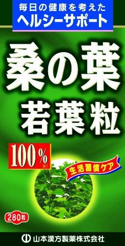 山本漢方 桑の葉粒100%