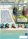 リンクル・イン・タイム [DVD] 画像