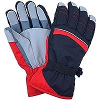 スキー手袋 グローブ 大人用 メンズ レディース 手袋 手首ベルト 防寒 スキー fo-skitb03