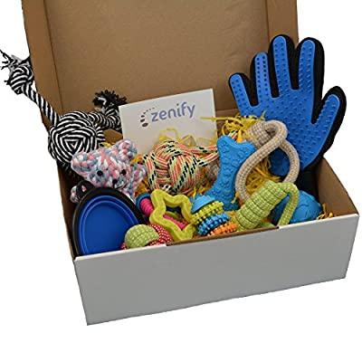 Zenify Puppy Gift Box for New Dog Owners