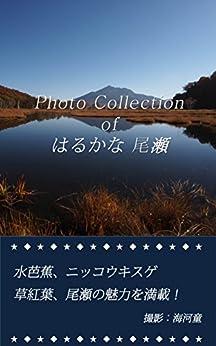 [海河童]のPhoto Collection of はるかな尾瀬: 水芭蕉、ニッコウキスゲ、草紅葉、尾瀬の魅力を満載!