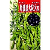 大豆 種 丹波黒大豆 小袋(約90粒)