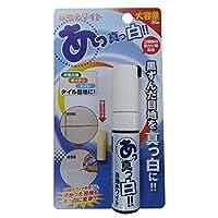 日本製 Japan 高森コーキ お風呂場の目地ホワイト 【まとめ買い10個セット】 RW-1N-set10