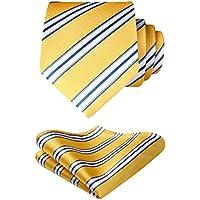HISDERN Formal Ties for men Business Striped Tie Set Handkerchief Wedding Party Necktie & Pocket Square Set