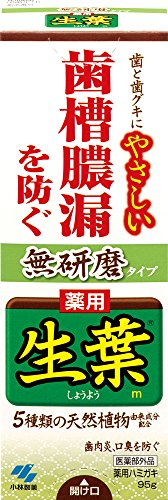 生葉(しょうよう) 無研磨タイプ 歯槽膿漏を防ぐ 薬用ハミガキ ハーブミント味 95g
