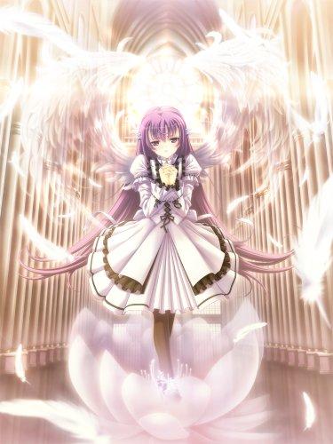 「天使の羽根を踏まないでっ」の画像検索結果