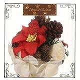 Sola Flower 【 クリスマス エディション 】ソラフラワー スフィア Poinsettia ポインセチア Sphere