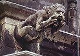 Holy Terrors: Gargoyles on Medieval Buildings 画像