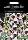 WB 英国ジョンソンズシード Johnsons Seeds world botanics collection Foxglove Pam's Choice フォックスグローブ(ジギタリス)・パムズ・チョイス