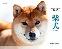 カレンダー2019 柴犬 (ヤマケイカレンダー2019)