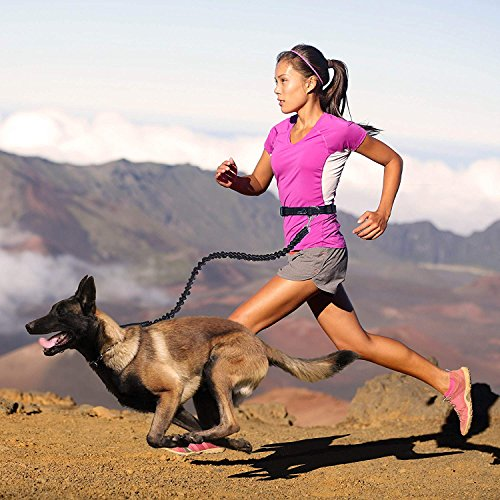 リード 犬, PETBABA(ペットババ) ハンズフリー 腰ベルト付き 犬用リード 調節可能 ジョギング/ランニング/ハイキング 伸縮性リーシュ 中型犬 大型犬 ペット用品 -ブラック