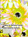 Flowers for Idelfonso Fuentes Heroe Castaños Coahuila Prints in a Book to Celebrate, Honor Gift Use the prints to enjoy, hang or collect. The white space on the opposite side can be used to journal experiences by Artist Grace Divine