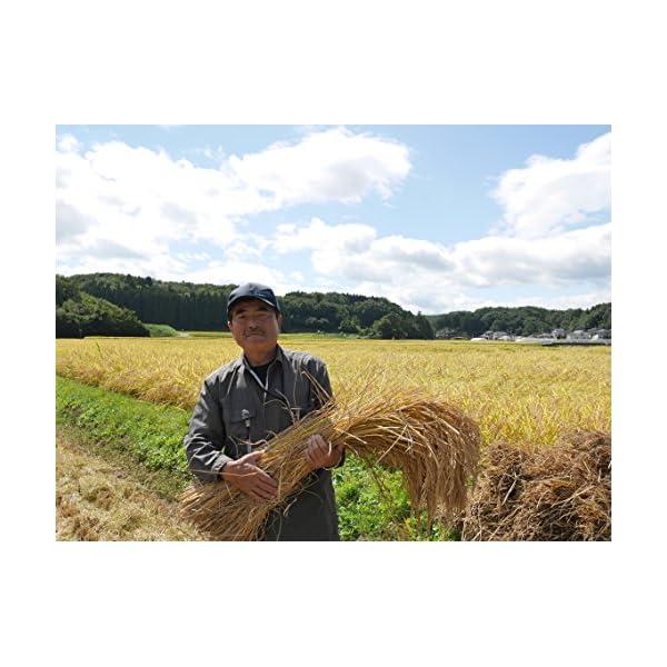 【精米】福島県産 白米 JA夢みなみ 岩瀬清流...の紹介画像4
