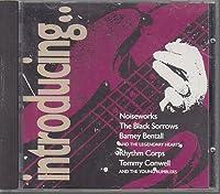 Noiseworks, Black Sorrows, Barney Bentall & The Legendary Hearts, Rhythm Corps..