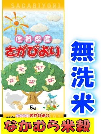佐賀県産  無洗米 さがびより 10kg  平成29年産  (5kg×2袋)