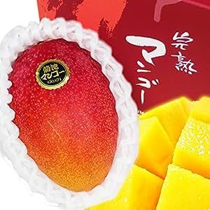 【 熊本県産 】 高級 完熟 マンゴー 2玉化粧箱入り 2L~4Lサイズ