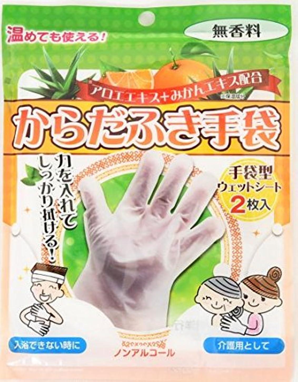 ボーナス立証する広告するからだふき手袋 2枚入×80袋セット (合計160枚)