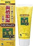 生葉EX(しょうようEX) 歯槽膿漏を防ぐ 薬用ハミガキ ハーブミント味 100g リーフレット付き