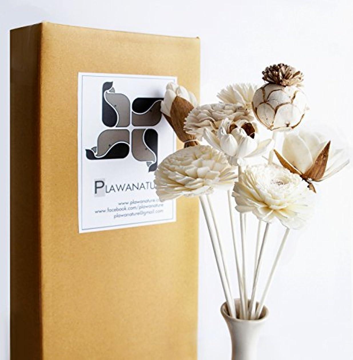 周辺慢な脅威エキゾチックPlawanatureのセット8ミックスSola Wood Flower with Reed Diffuser for Home Fragranceアロマオイル。