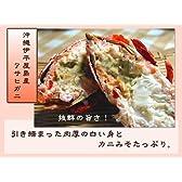 沖縄伊平屋島産 アサヒガニ (スパナクラブ) 10kg 伊平屋村漁業協同組合 天然もの 身が厚く引き締まった食べ応えのある蟹 淡白で上品な甘みの身とクセのないカニ味噌